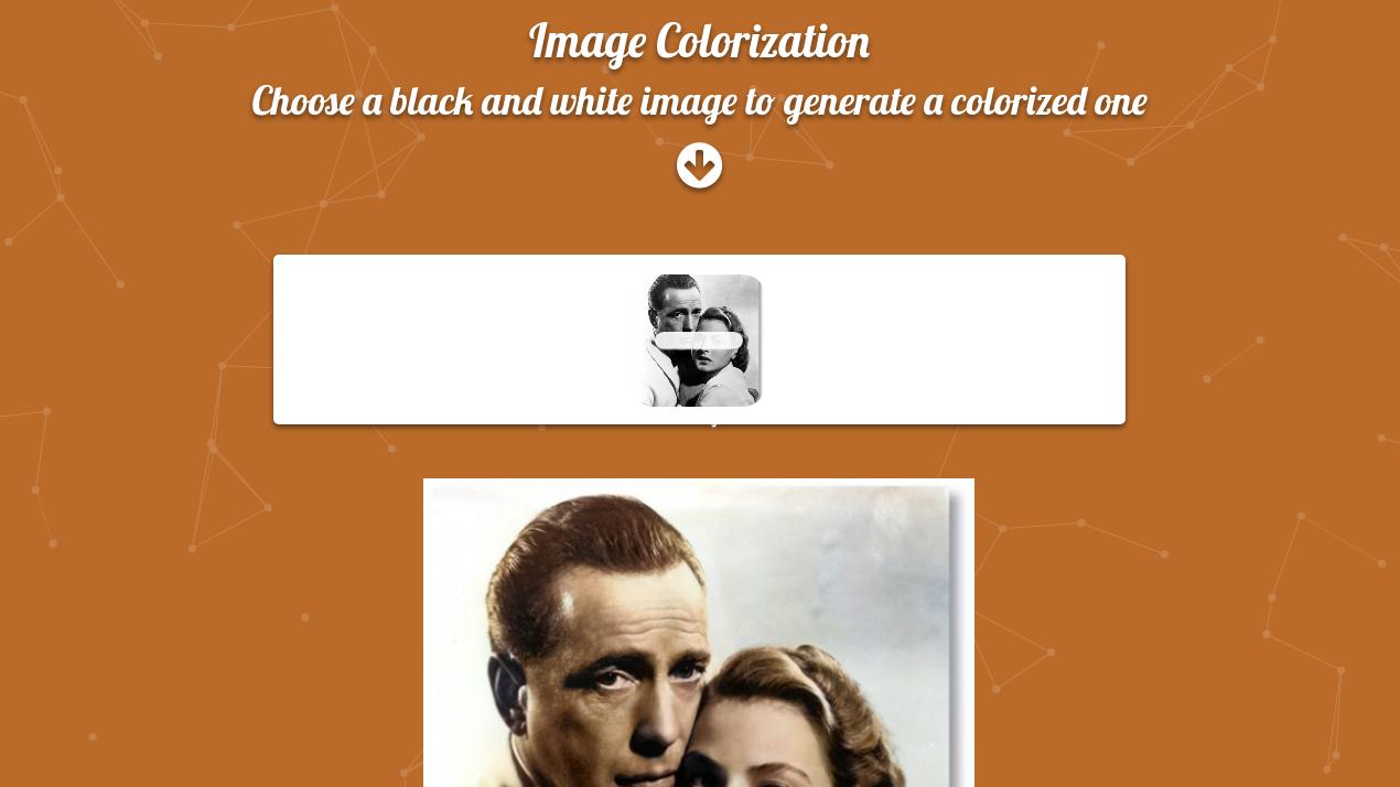 Image Colorization